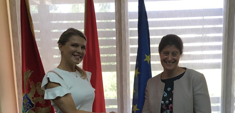 Vuksanović Stanković i Kemp