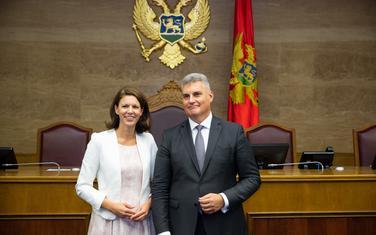 Lajkert i Brajović