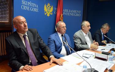 """""""Zataškavanje afere"""": Katnić i Stanković na sjednici Odbora za antikorupciju (arhiva)"""