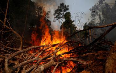 Od početka godine zabilježena 78.383 požara