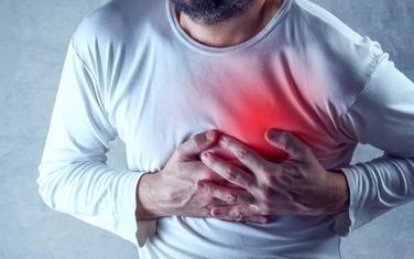Novo istraživanje tvrdi da je genetska mutacija koja se odigrala prije više miliona godina zaslužna za to što smo skloniji kardiovaskularnim bolestima od drugih životinja