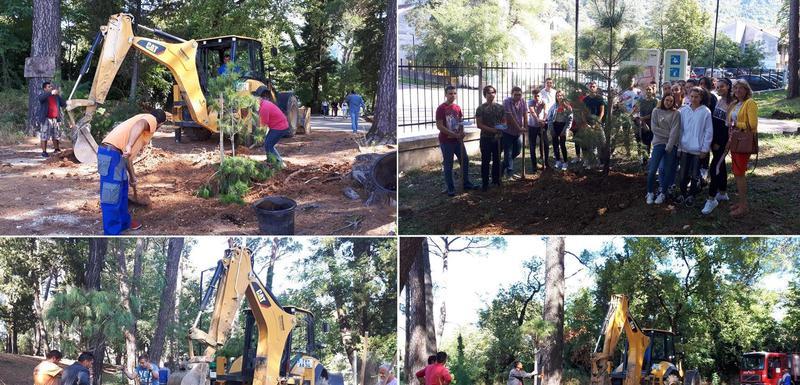 Sa akcije u parku u Tivtu