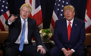 Džonson i Tramp