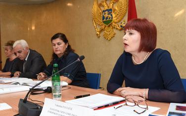 Pavličićeva pred Odborom za ljudska i manjinska prava