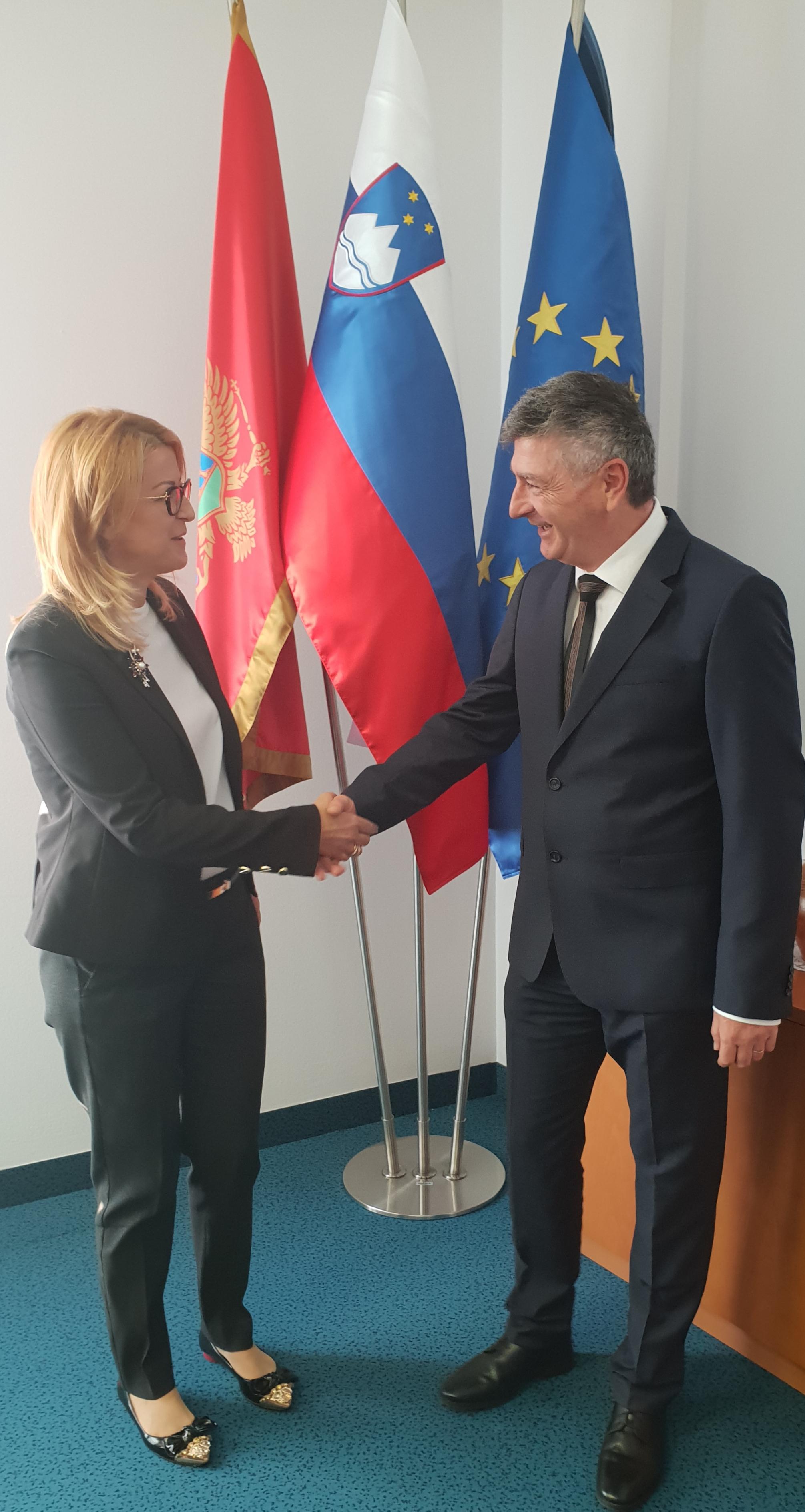Suzana Pribilović, Rudi Medved