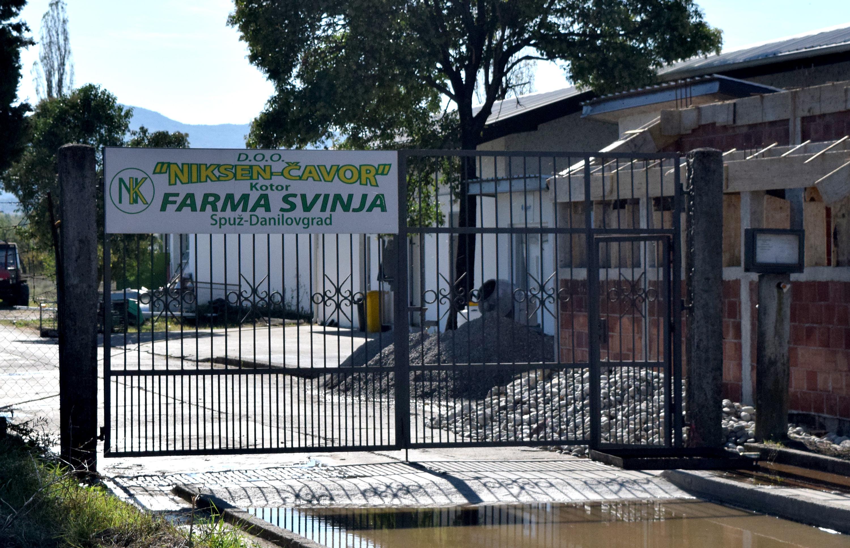 Farma svinja mjesecima bez vodne dozvole za sistem za sakupljanje, preciščavanje i ispuštanje otpadnih voda