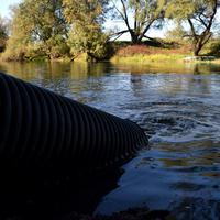 Svinjski otpad ide direktno u rijeku