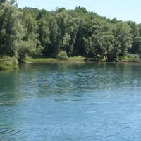 Vodu rijeke svi zagađuju: Slap na Zeti