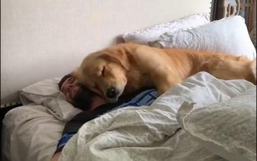Zajedno u krevetu