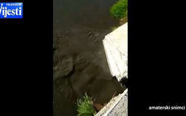 Neprečišćena voda se izliva u rijeku Zetu