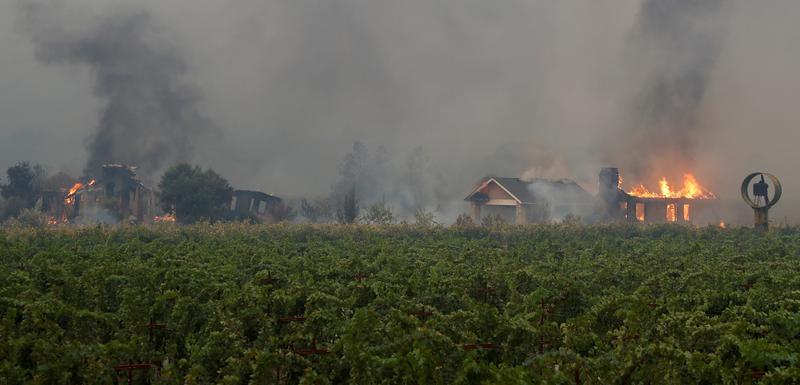 Vatra do danas zahvatila površinu od oko 10.000 ari.