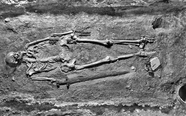 Skelet je otkriven 1928. godine