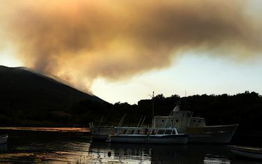 Požar na Luštici 2017.