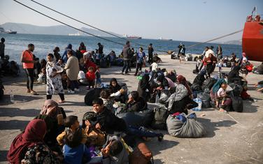 Migranti u luci Elfesina