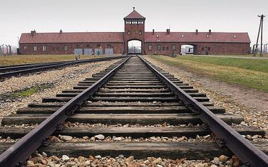 Aušvic je bio je jedan od kampova smrti u Poljskoj