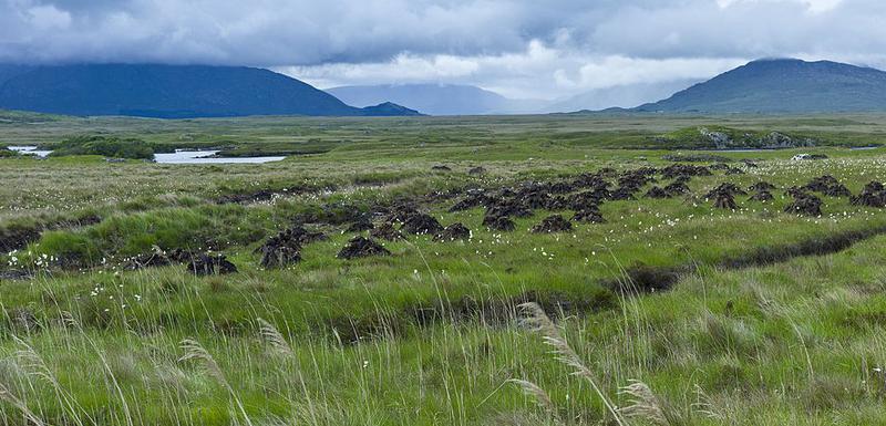 Oko 20 posto površine Velike Britanije i Irske prekriveno je tresetnim zemljištem
