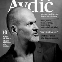 Damir Avdić, naslovnica albuma