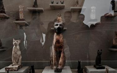 Pronađene mumije