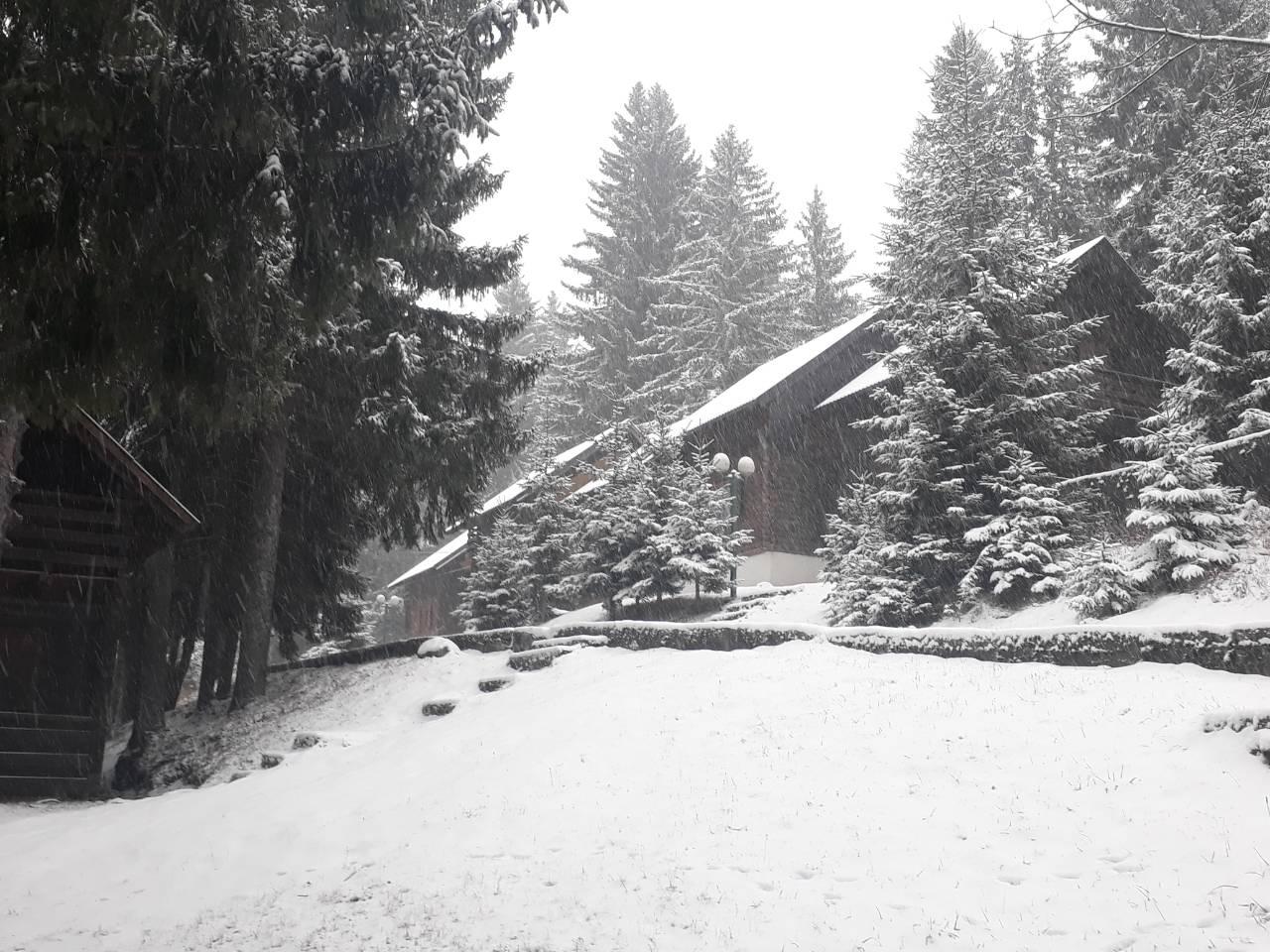 Žabljak jutros (foto: Vera Đerković)