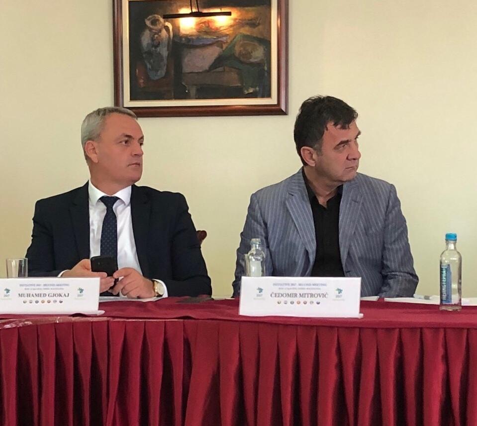 Gjokaj i Mitrović