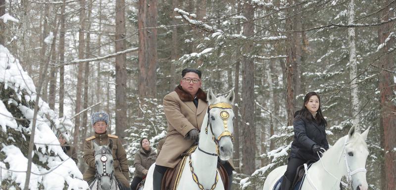 Kim na bijelom konju
