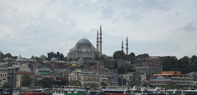 Istanbul sa džamijom Sulejmanijom