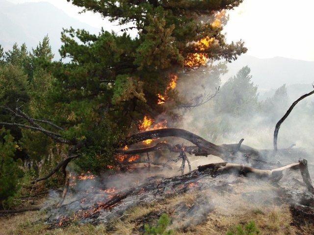 Požar u Nacionalnom parku Prokletije