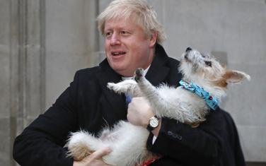 Džonson se uprkos gafovima dopada Britancima