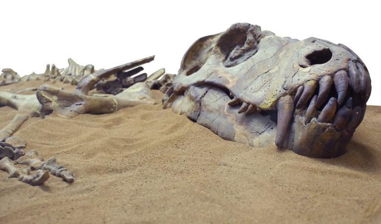 Dinosaurusi su izumrli prije oko 66 miliona godina