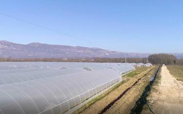 """Poljoprivredno dobro kompanije """"Voli"""" u Šasu u Ulcinju"""