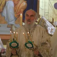 Patrijarh Irinej