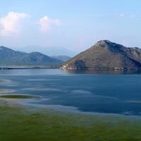 NP Skadarsko jezero (Ilustracija)