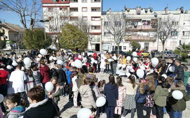 Sa današnje manifestacije u Danilovgradu