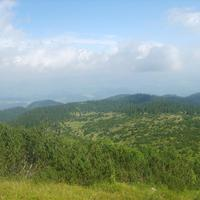 Planina Ljubišnja