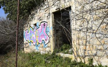 Oslikani grafit u Tivtu