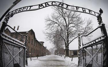 Oko 1,1 milion ljudi ubijeno je u Aušvicu