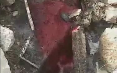 Izlivanje krvi u Zetu