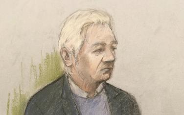Crtež iz sudnice: Asanž
