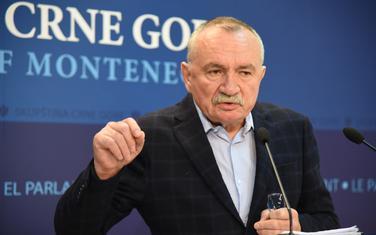 Ko voli Crnu Goru, podržaće rezoluciju: Radulović