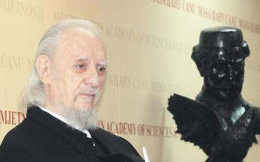 Akademik Jevrem Brković