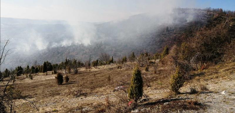 Paljenje vatre u selu Rudnica izmaklo kontroli