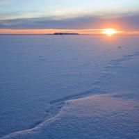 Arktik: Ilustracija
