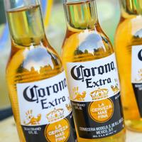 Corona pivo