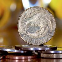 Jedan novozelanski dolar (Ilustracija)